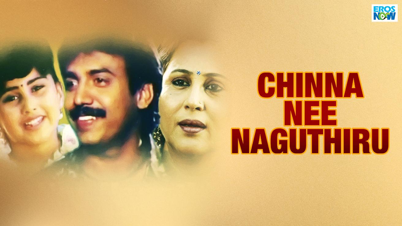 Chinna Nee Naguthiru