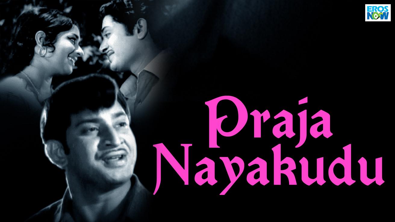 Praja Nayakudu