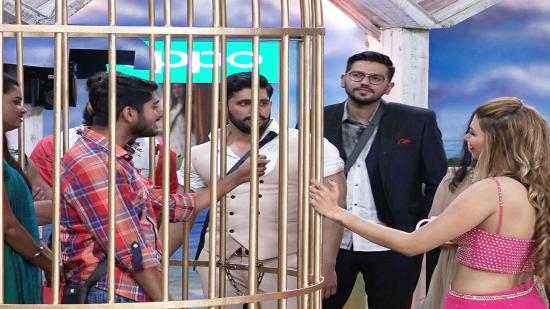 Watch Bigg Boss Episode 13 Day Videos Online Hd For Free